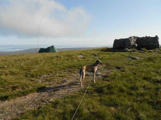 NP6 Campover with Finn, 15& 16-07-21 (101)
