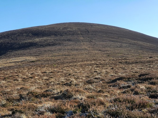 Meikle Conval from the track on the way down (North side)