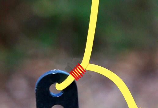 Antenna link