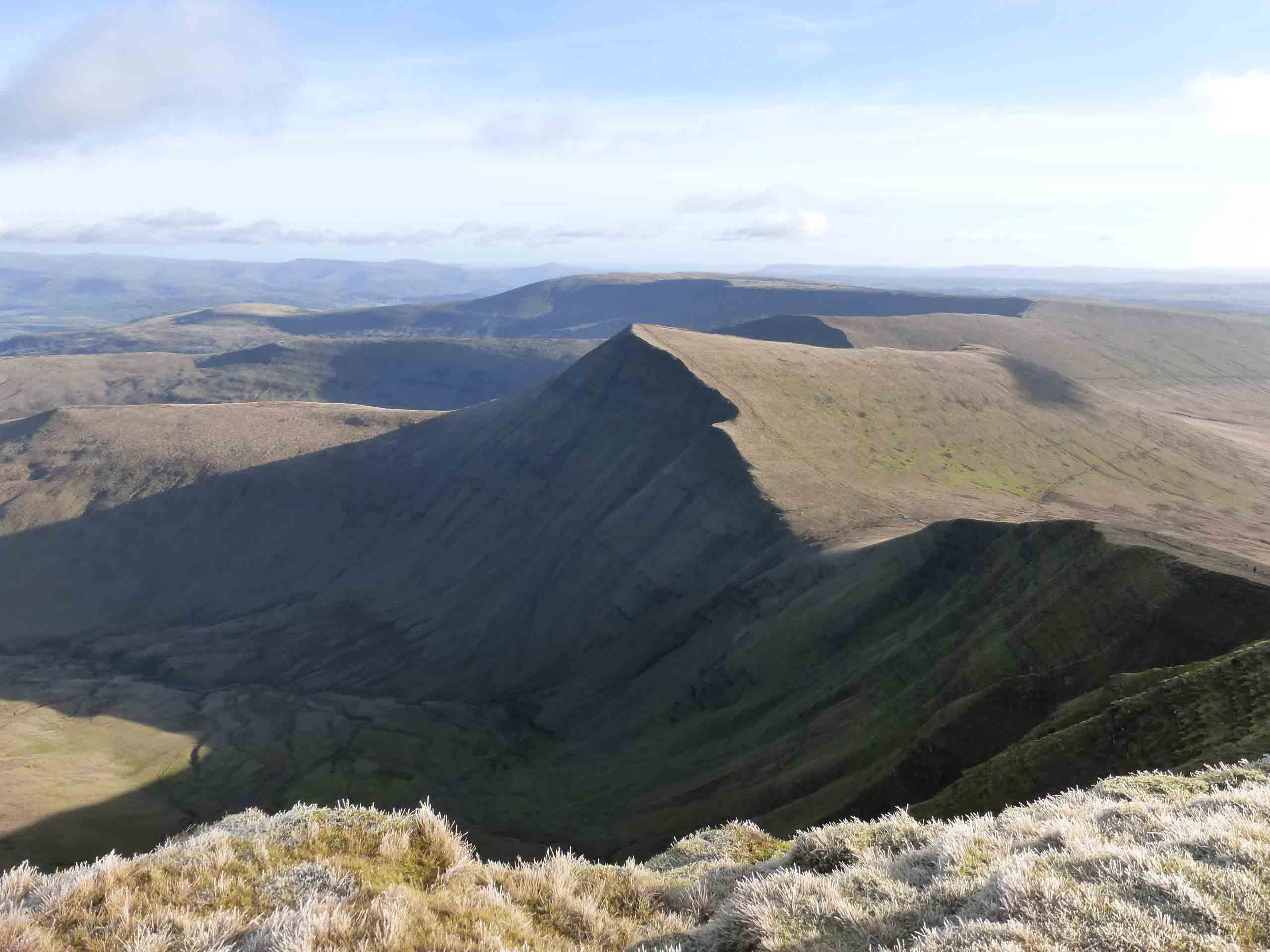 Towards-Cribyn
